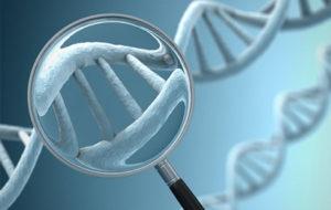 Le malattie genetiche rare, asal onlus